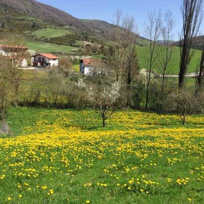 Primavera en Lintzoain