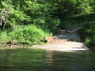El río de nuestro valle Lintzoain